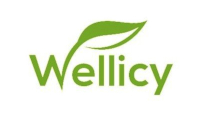 wellicy.com store logo